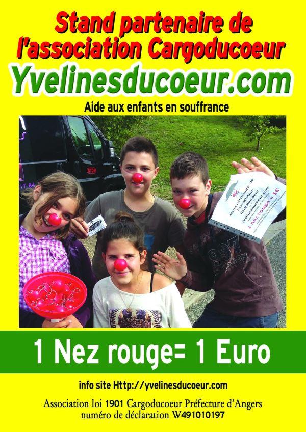 Affiche_Yvelines